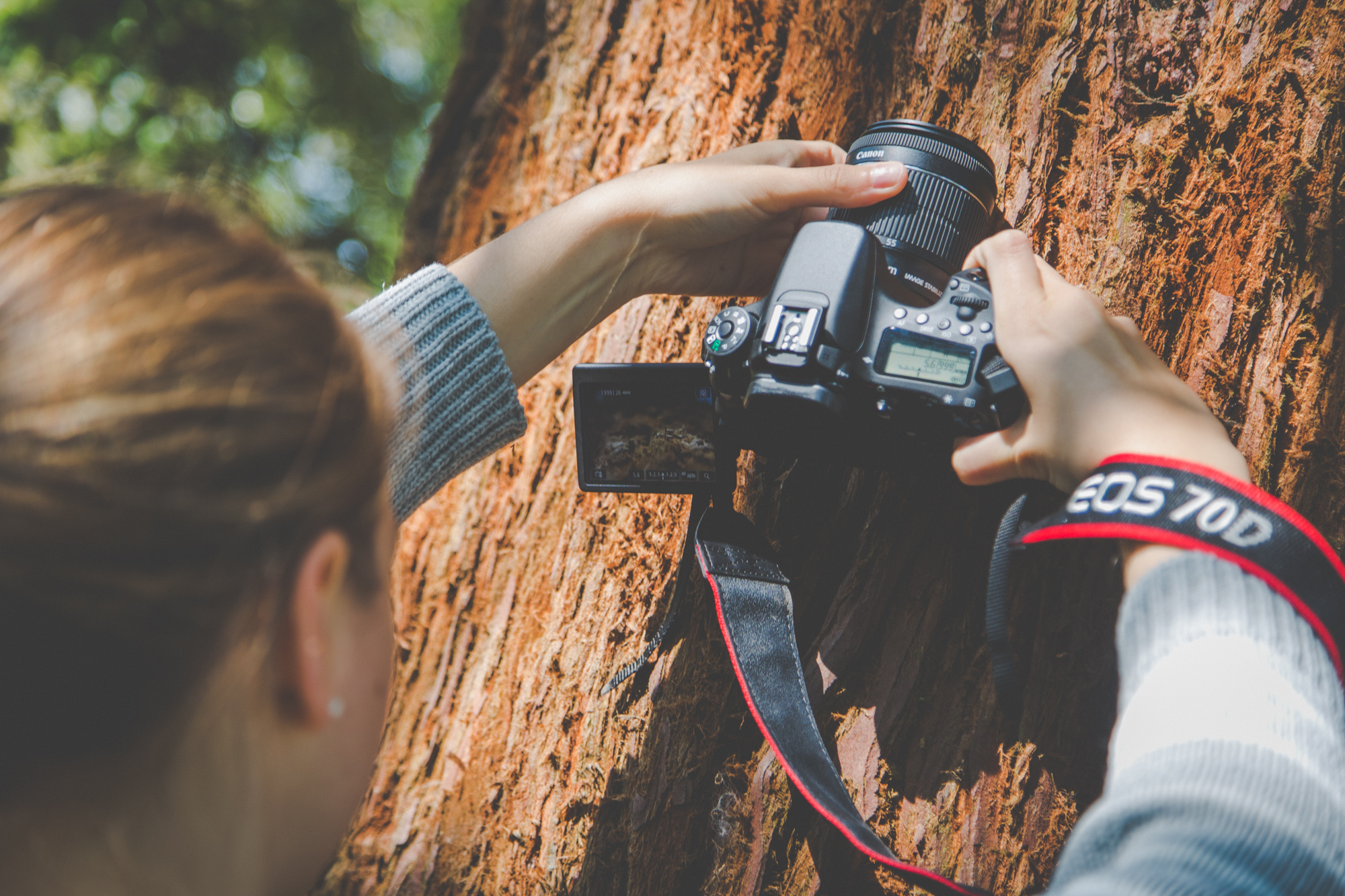 Photography Workshop for Young People in Hampshire